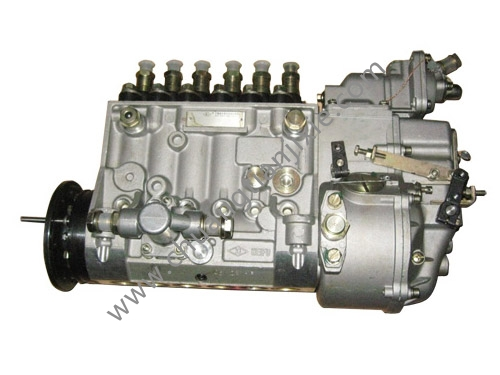 Injection Pump 1015